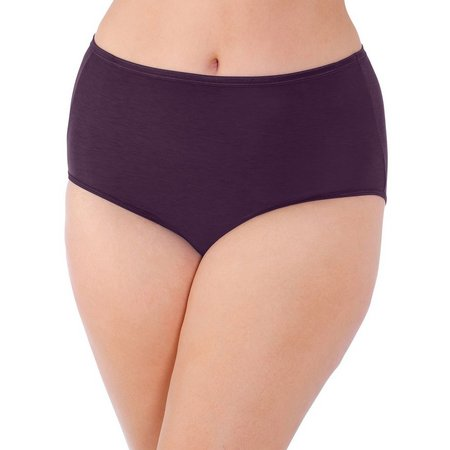 Vanity Fair Body Illumination Brief Panties 13811