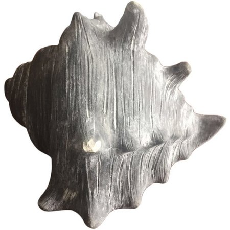 Fancy That Silver Sea Chalk Finish Conch Shell