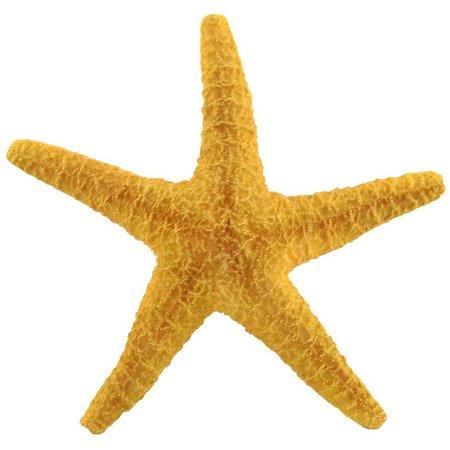 Fancy That Resin Starfish Figurine
