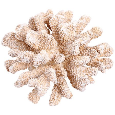 Fancy That Oyster Bay Large 8'' Coral Figurine