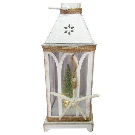Brighten the Season LED Starfish Lantern Decor
