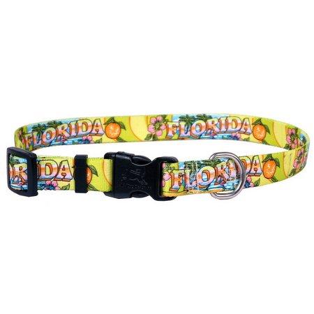 Yellow Dog Design Florida Design Pet Collar