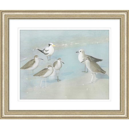Coastal Home Group Of Gulls Framed Art