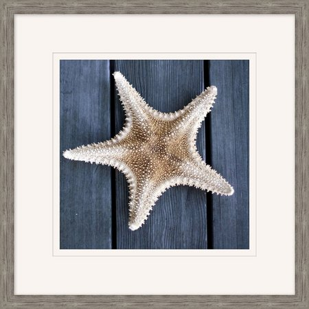Palm Island Home Starfish On Wood Framed Art