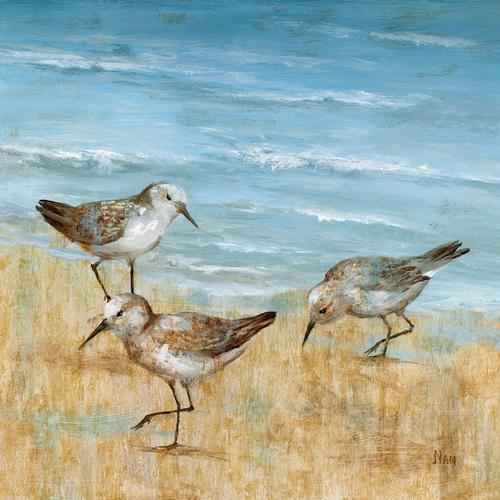 Sandpiper Paintings Canvas