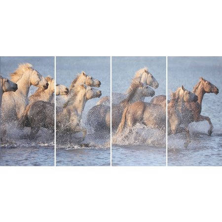 E2 4-pc. Horse Canvas Wall Art