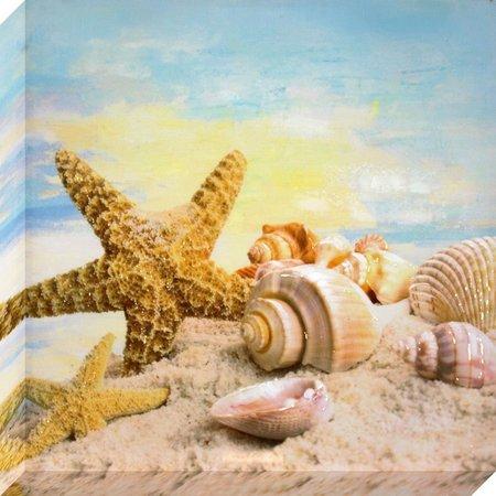 Patton Seashell Scene Wall Art