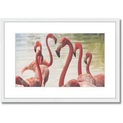 Palm Island Home Flamingo Stroll Framed Art