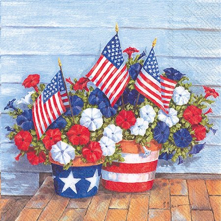 Boston International 20-pk. Patriotic Napkins