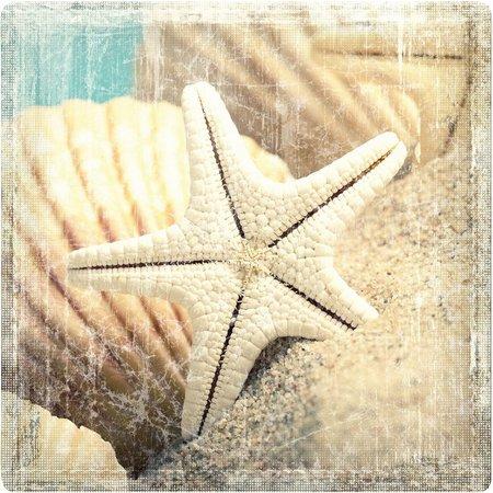 P. Graham Dunn Make A Wish Star And