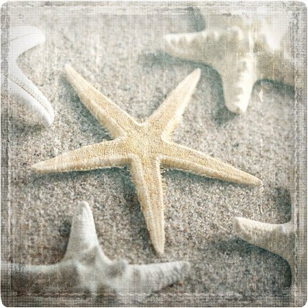 P. Graham Dunn Make A Wish Starfield Coaster