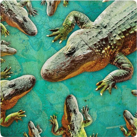 P. Graham Dunn Aligator Coaster