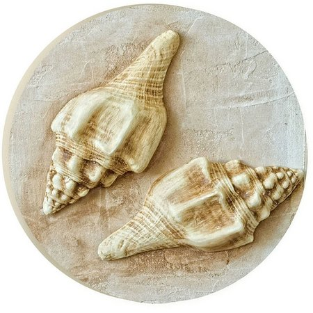 P. Graham Dunn Natural Seashell Pair Car Coaster