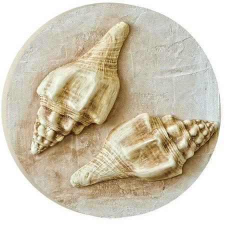 P. Graham Dunn Natural Seashell Pair Car Coaster