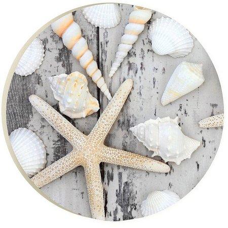 P. Graham Dunn Starfish And Seashells Car Coaster