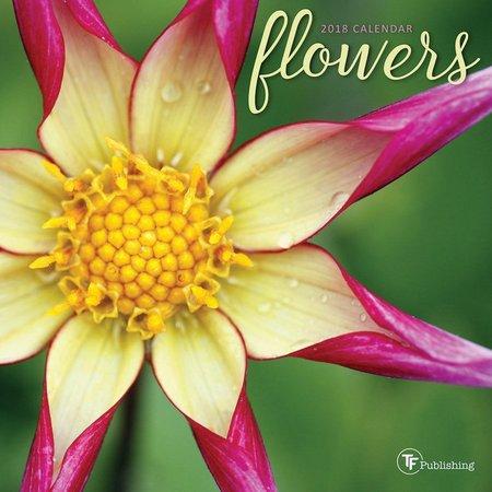 TF Publishing 2018 Flowers Mini Wall Calendar