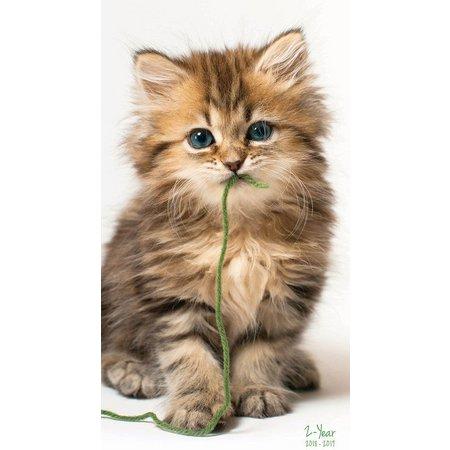 TF Publishing 2018-2019 Kittens 2-Year Planner