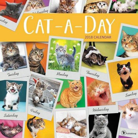 TF Publishing 2018 Cat-A-Day Wall Calendar