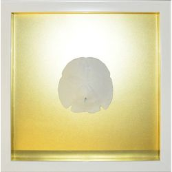 PTM Images Gold Sand Dollar Shadowbox Wall Art
