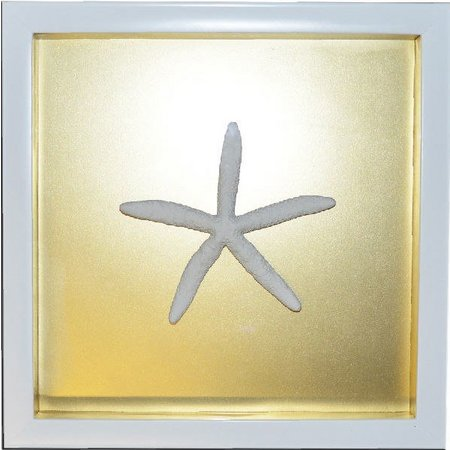 PTM Images Gold Starfish Shadowbox Wall Art