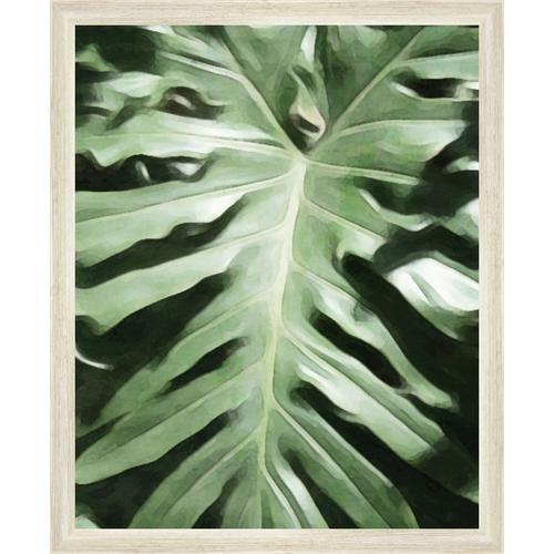 Ptm Images Tropical Leaf Framed Wall Art Bealls Florida