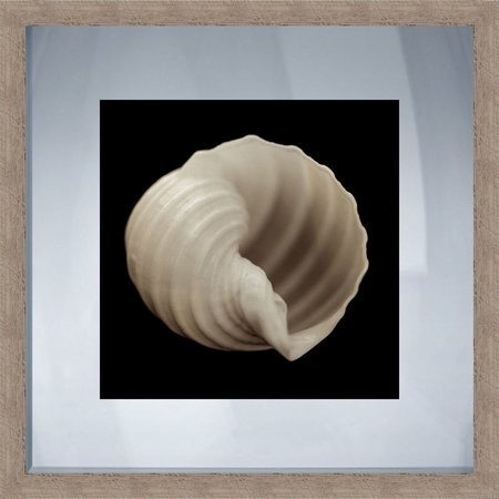 PTM Images Shell Rustic Framed Wall Art