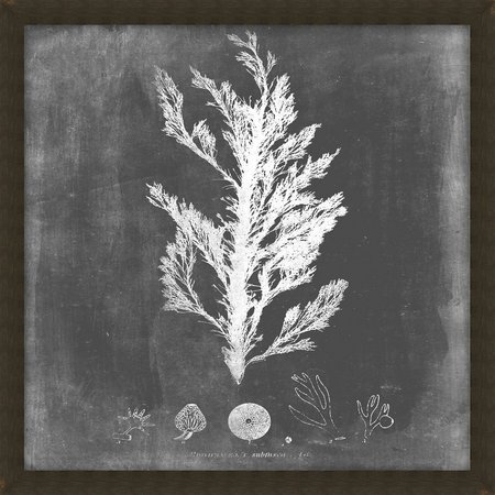 PTM Images Black & White Sea IV Wall