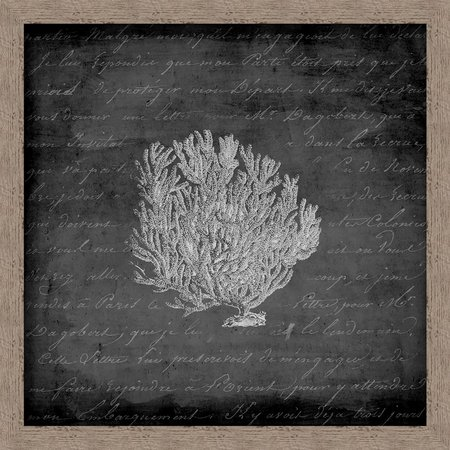 PTM Images Black & White Sea Fan Wall