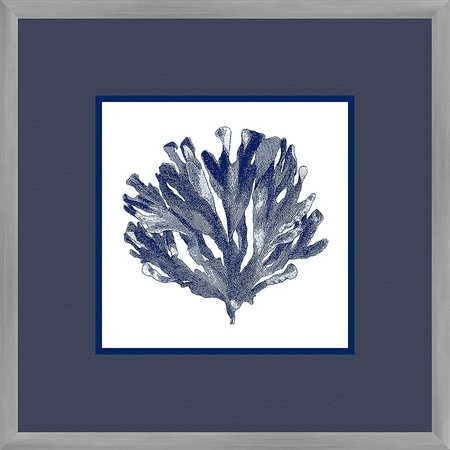 PTM Images Navy Coral II Framed Wall Art