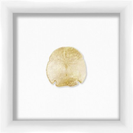 PTM Images Sand Dollar Shadowbox Wall Art