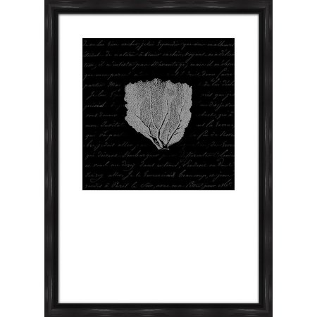 PTM Images Black & White Coral Framed Wall