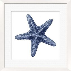 PTM Images Starfish Framed Wall Art