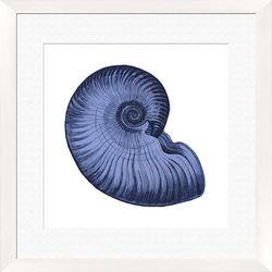 PTM Images Sea Shell Framed Wall Art