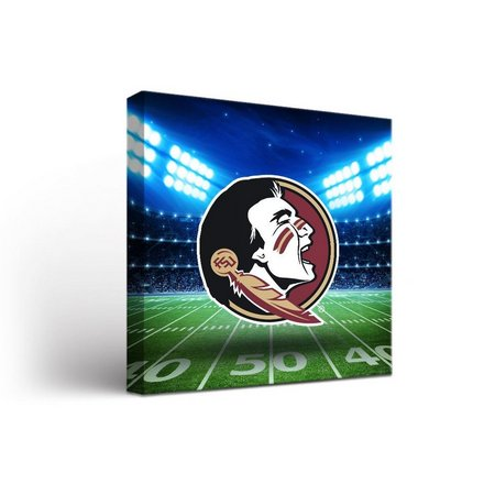 Florida State Stadium Design Canvas Wall Art