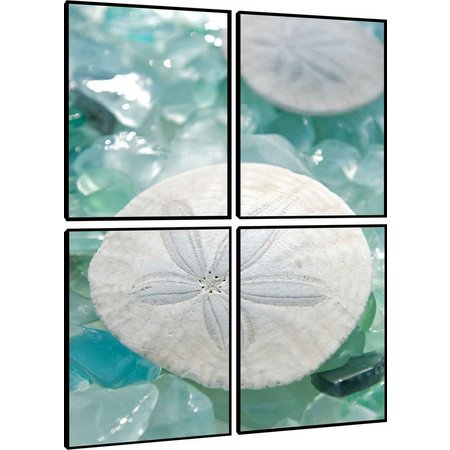PTM Images Sand Dollar Quadriptych Wall Art Set