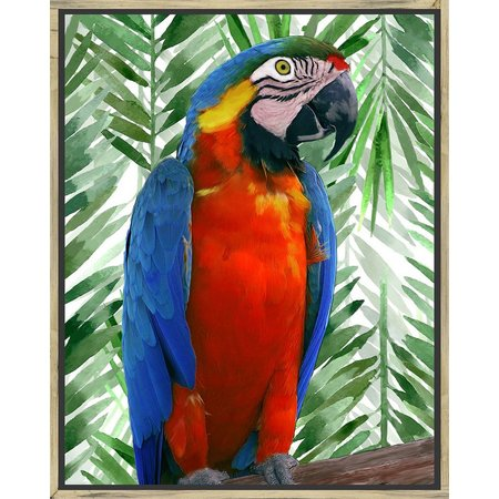 PTM Images Birds of Paradise I Framed Wall