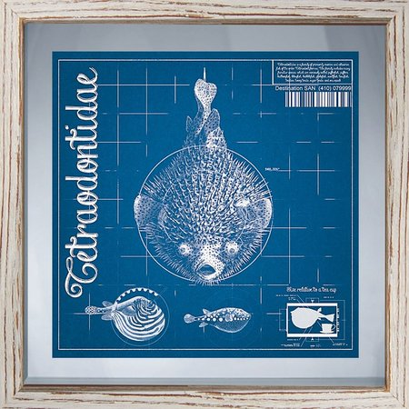PTM Images Blueprint Coastal I Framed Wall Art
