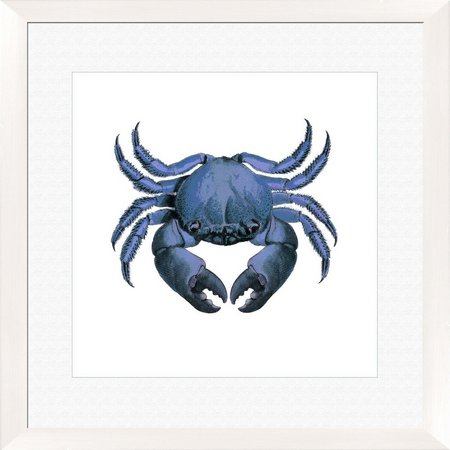 PTM Images Crab Framed Wall Art