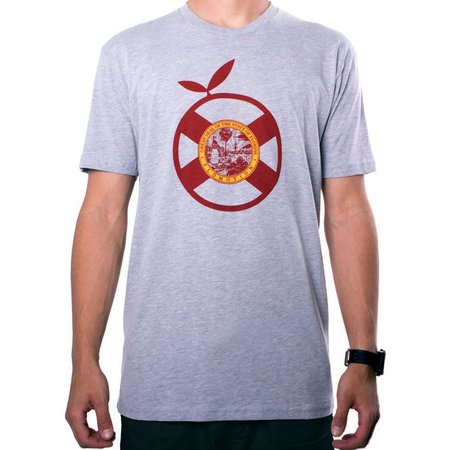 Flomotion Mens Core 2.0 Heather Grey T-Shirt