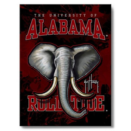 Alabama 18'' x 24'' Wall Art by Guy