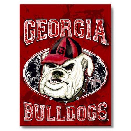 Georgia Bulldog 18'' x 24'' Wall Art by