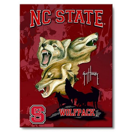 NC State 18'' x 24'' Wall Art by