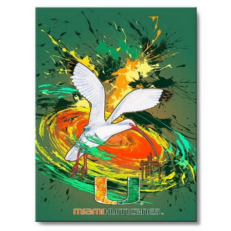 Miami Hurricanes 18'' x 24'' Art by Guy