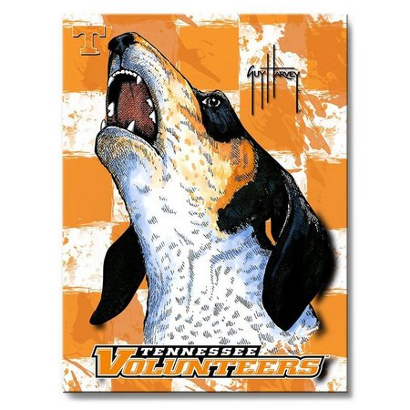 Tennessee Vols 18'' x 24'' Wall Art by