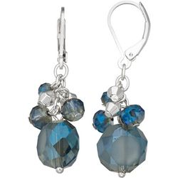 Napier Irridesant Beaded Cluster Drop Earrings