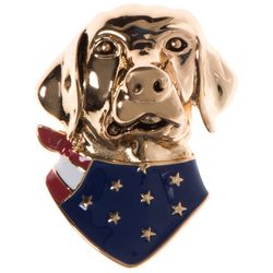 Pet Friends Gold Tone American Flag Dog Pin