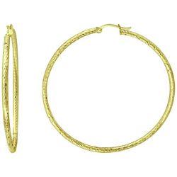Piper & Taylor Large Textured Hoop Earrings