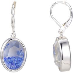 Shine Aqua Blue Crystal Shaker Disc Drop Earrings