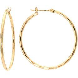 Sea Life Box Thin Diamond Cut Hoop Earrings