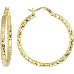 Sea Life Box 40mm Diamond Cut Hoop Earrings